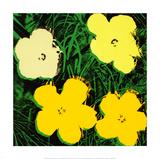 Flowers, c.1970 (Yellow) Giclée-tryk af Andy Warhol