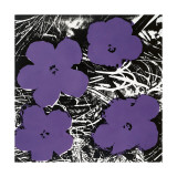 Flowers, c.1965 (Purple) Giclee Print by Andy Warhol