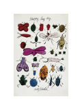 Happy Bug Day, c.1954 Giclee Print by Andy Warhol