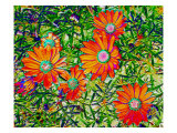 Orange Flowers Giclee Print by Rich LaPenna