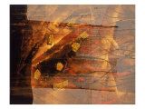 Abstract Image in Brown and Red Giclee Print by Daniel Root