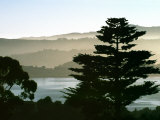 Hazy Mountain Lake, Seen from Top of Hill in Tiburon, Northern California, USA Photographic Print by Diane Miller