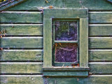 Window of Abandoned Building Photographic Print by Diane Miller
