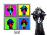 Staring Emus Photographic Print by Abdul Kadir Audah