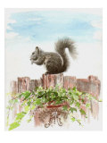 Squirrel Sitting on the Fence Above a Pot of Ivy Giclee Print by Rich LaPenna