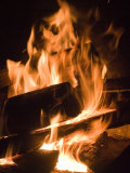 Fire and Wood Lmina fotogrfica por Daniel Root
