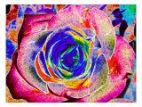 Rainbow-Colored Rose Giclee Print by Rich LaPenna