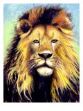 Lion Portrait Giclee Print by Rich LaPenna