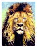 Lion Portrait Giclee Print by Rich LaPenna