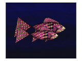Two Red and Yellow Happy Fish Reproduction procédé giclée par Rich LaPenna