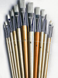 Set of Artist Paintbrushes Fan Out Photographic Print by Winfred Evers