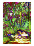 Secret Trail Through Cypress Forest Giclee Print by Rich LaPenna
