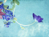 Flower Bouquet Floating in Water Photographic Print by April Bauknight