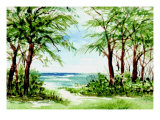 Australian Pine and Seagrape Line Path to Beach Giclee Print by Rich LaPenna