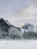 Half Dome, Yosemite, California Photographic Print by Diane Miller