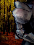 The Fox Hunts the Knight in Armor in the Forest Photographic Print by Abdul Kadir Audah