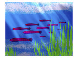 Purple Fish in Calm Blue Water with Seagrass Giclee Print by Rich LaPenna