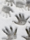 Children&#39;s Handprints in a Spring Snow Photographic Print by John Nordell