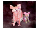 Pig and Piglet Statues Giclee Print by Rich LaPenna