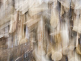 Double Exposure of a Wood Pile Photographie par John Churchman