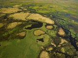 Aerial View of the Okavango Delta Photographic Print by Beverly Joubert