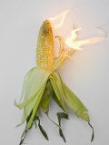 Corn on Fire Photographic Print by John Churchman