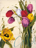 Bouquet of Tulips I Posters by Antonio Massa