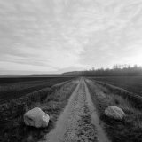 Dirt Road Between Two Furrowed Fields, Near Van Gogh&#39;s Early Home Photographic Print by Lynn Johnson