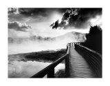 Camino sobre el lago Póster