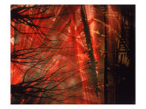 Abstract Image in Red and Black Giclee Print by Daniel Root