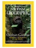 Cover of the February, 2000 Issue of National Geographic Magazine Photographic Print by Michael Nichols