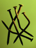 Five Rusty Nails Against a Green Background Photographic Print by John Manno