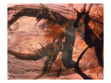 Abstract Image in Brown and Black Giclee Print by Daniel Root