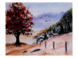 Huge Orange Tree in Foreground, Two Barns and Fence in Background Giclee Print by Rich LaPenna