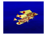 Couple of Bright Yellow Flyingfish Giclee Print by Rich LaPenna