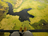 Aerial View of the Okavango Delta with Photographer's Feet in Sight Photographic Print by Beverly Joubert