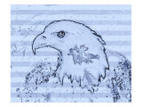 Bald Eagle Illustration Giclee Print by Rich LaPenna
