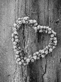 Frosted Heart-Shaped Metal Bell Wreath on Rustic Wooden Background Lmina fotogrfica por James Guilliam