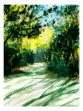 Shadows of Trees Line the Sandy Trail Giclee Print by Rich LaPenna