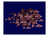 Red School of Fish Giclee Print by Rich LaPenna