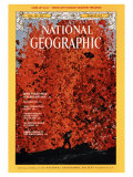 Cover of the March, 1975 Issue of National Geographic Magazine Photographic Print by Robert Madden