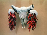 Snowy Cow Skull on Wall with Chili Ristras Hanging on Horns, Santa Fe, New Mexico, USA Photographic Print by Diane Miller