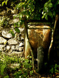 Still Life Composition in Nature with Wheelbarrow Photographic Print by Claire Morgan