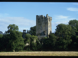 Blarney Castle Photographic Print by Martin Gray