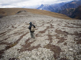 Hiking in the Muskwa-Kechika Management Area Photographic Print by Michael Brown