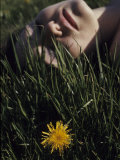 Woman Rests in the Sun in Grass Next to a Dandelion Photographic Print by Paul Damien