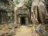 Giant Strangler Fig Tree Roots Embrace the Crumbling Ta Prohm Temple Photographic Print by Martin Gray