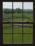 View of a Horse Farm from Inside a Window Photographic Print by Stacy Gold