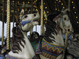 Carousel Horses at Veteran's Park Reproduction photographique par Paul Damien