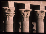 Stone Columns at the Philae Temple Photographic Print by Martin Gray